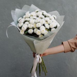 хризантемы хабаровск